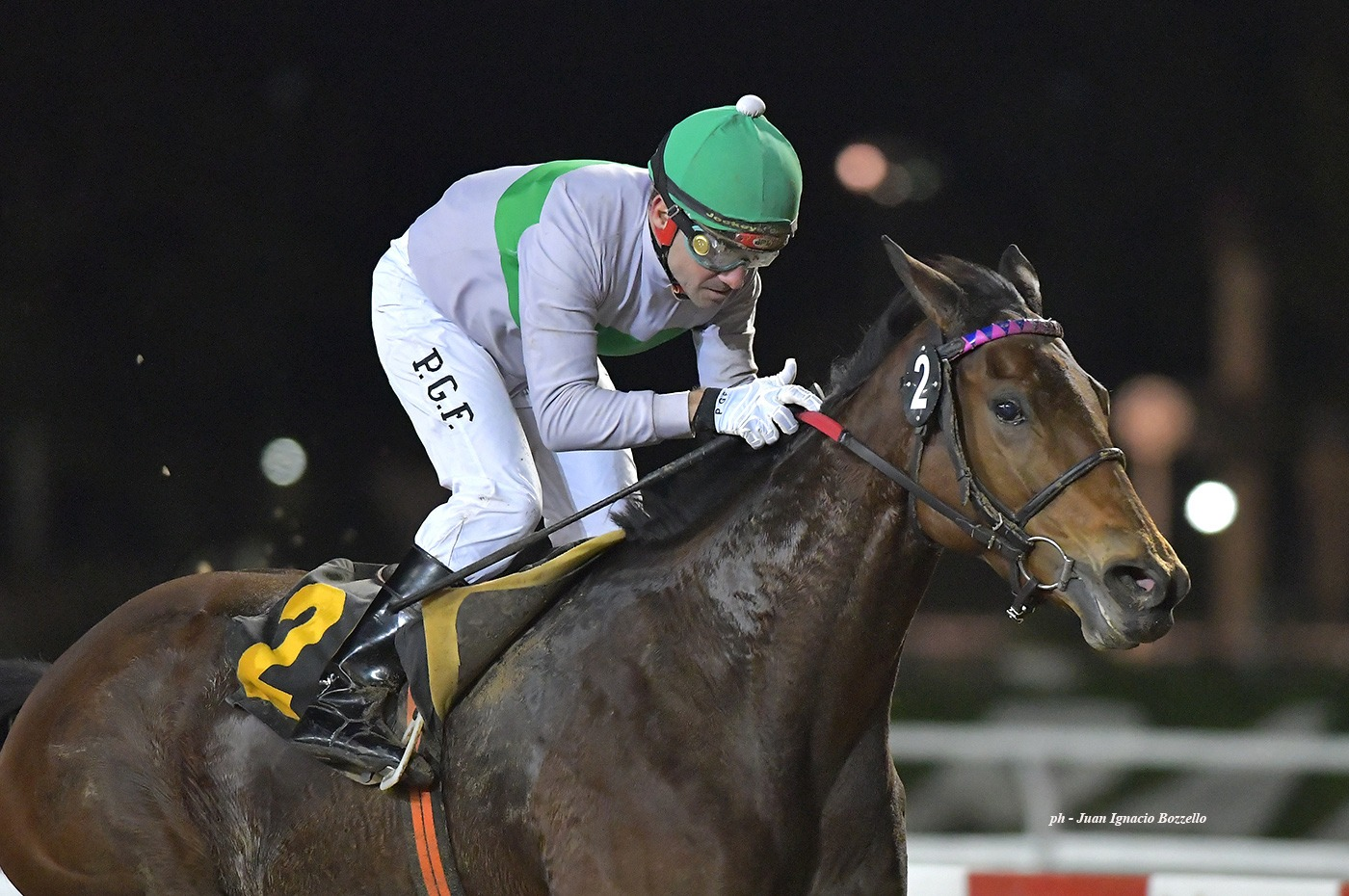 Ginger In The Rye (Catcher in the Rye) conquista Handicap (1800m-Arena-PAL).