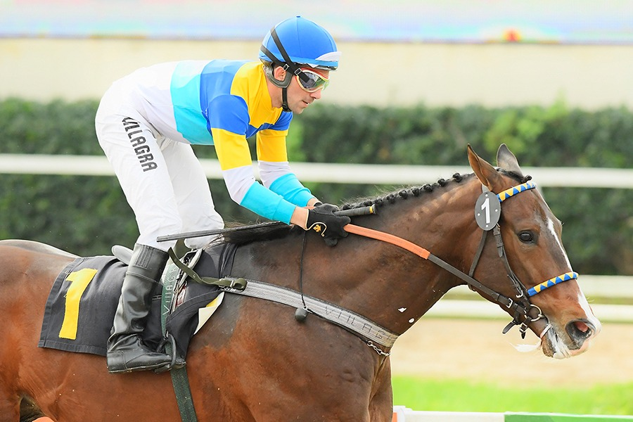 Crackspeed (Easing Along) ganó Condicional (1400m-Arena-PAL). - Staff ElTurf.com