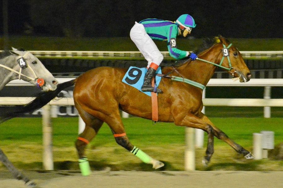 Frida Law (Southern Lawyer) se lleva Condicional (1200m-Arena-MAR). - Staff ElTurf.com