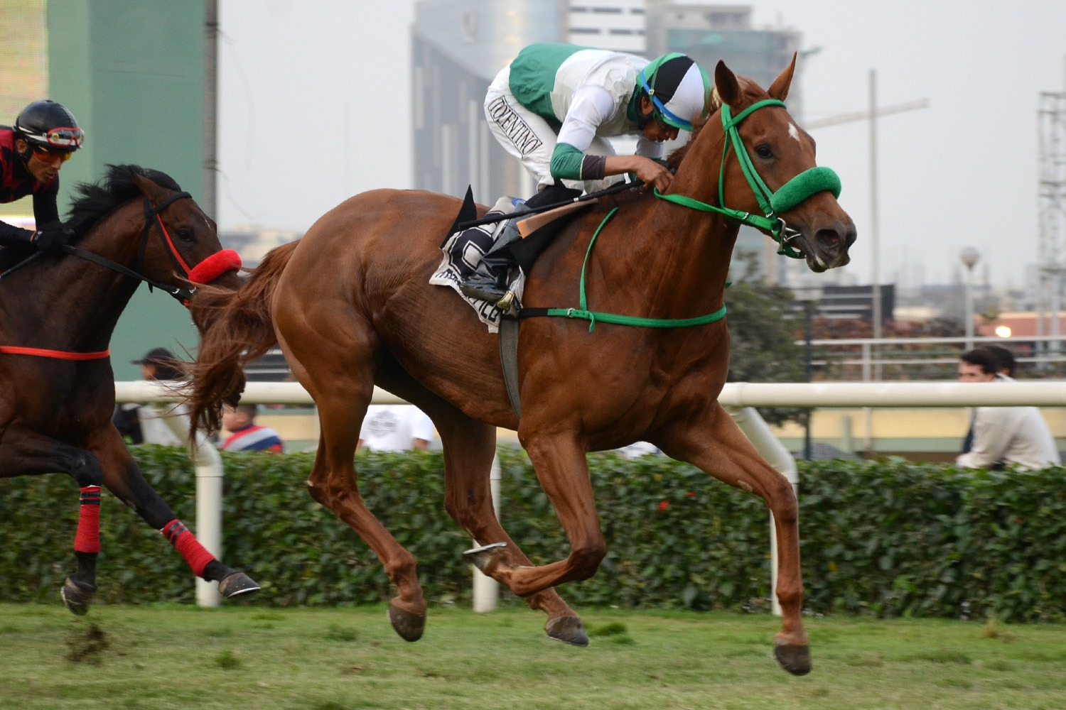 Charlotte (Action This Day) gana Condicional (2000m-Pasto-MONT).
