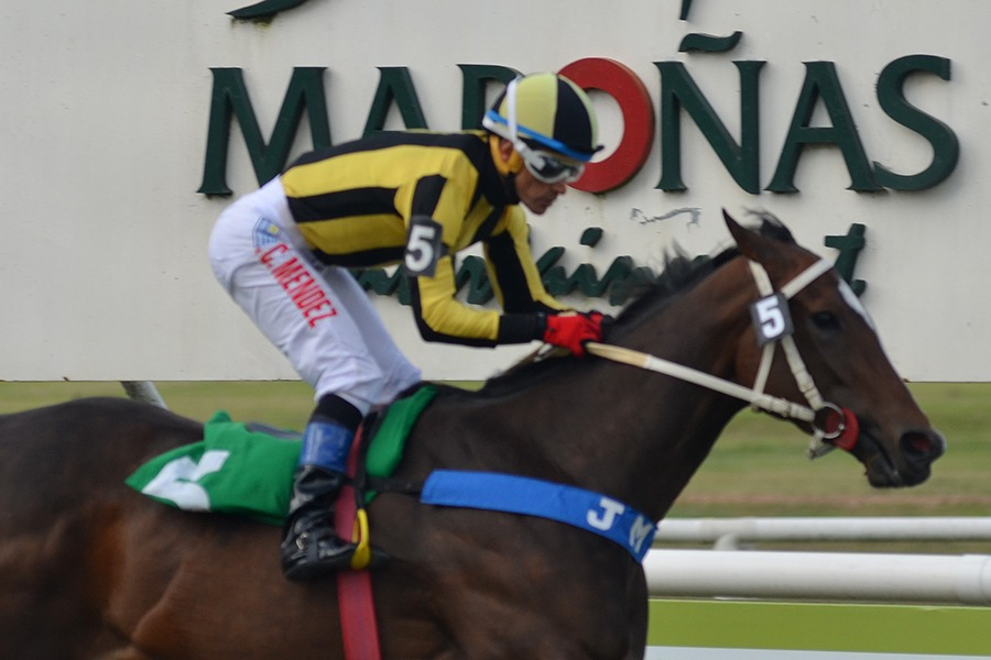 Inalcanzada (British Medium) se adjudica Handicap (1500m-Pasto-MAR).